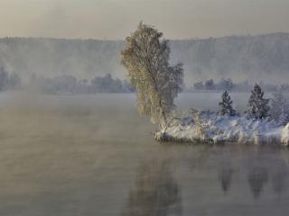 обои Зимняя берёзка над водой фото
