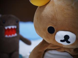обои Игрушечный медвежонок фото