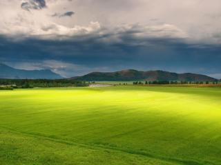 обои Зеленое поле на равнине фото
