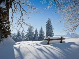 обои Снеговое волшебство фото