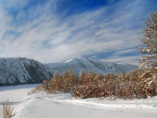 обои Красивый зимний день фото
