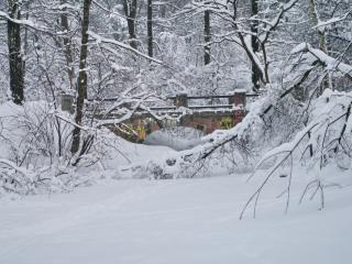 обои Мост между деревьев зимoй фото