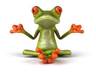 обои Лягушка медитируя фото