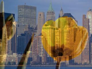 обои На фоне горада желтый тюльпан фото