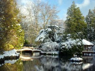 обои Зимний пруд с мостом и беседка фото