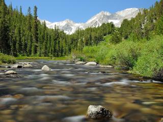 обои Лето, ручей, горы и зеленые леса фото