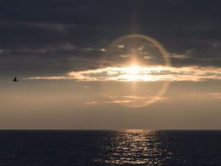 обои Туманное солнце над морем фото