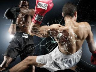 обои Нокаут в боксе фото