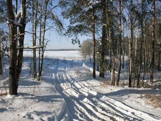 обои Зимними дорогами фото