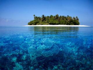обои Чистейшее море в тропиках фото