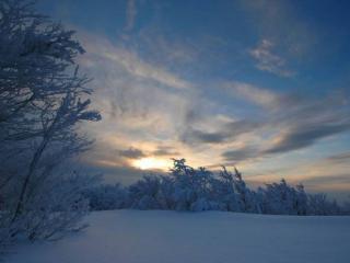 обои Закат заснеженной зимы фото