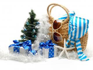 обои Маленькая елка и сумка с купальником и очками фото