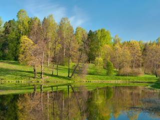 обои Пруд с весенней акварелью деревьев фото