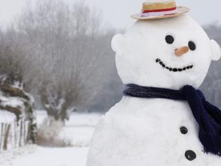 обои На краю огорода снеговик в брыле фото