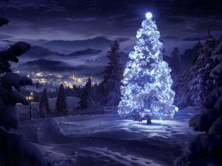 обои На опушке в рождественскую ночь фото