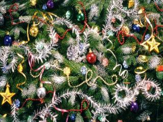 обои Фрагмент Новогодней ёлки фото