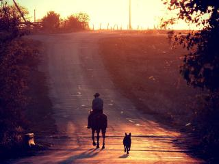 обои На деревне дорога идущая в гору фото