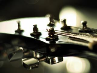 обои Колышки на грифе гитары со струнами фото