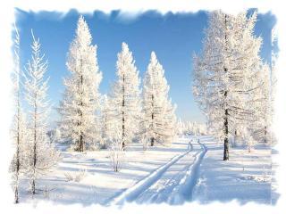 обои Дорога через снег фото