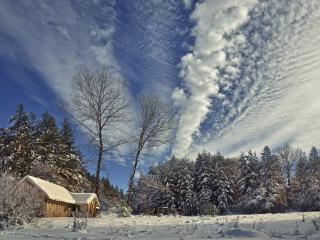 обои Зимнее небо,   домик и ельник фото