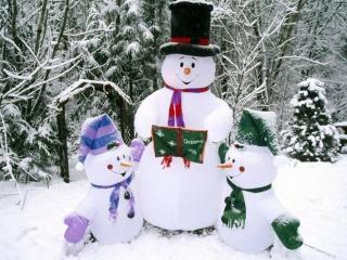 обои Зимняя радость фото