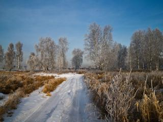 обои Малоснежная зима фото