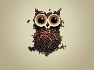 обои Кофейная сова с глазами-чашками фото