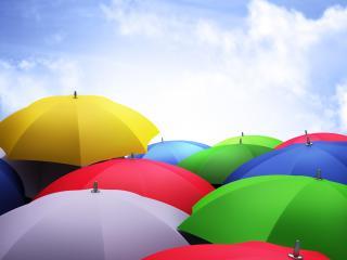 обои Зонты разноцветныe фото