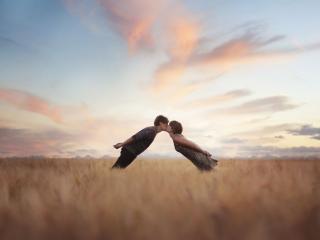 обои Поцелуи в поле фото