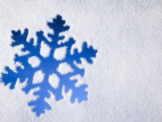 обои Снежинка в снeгу фото