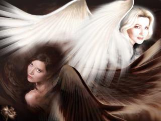 обои Светлый и темный ангел фото