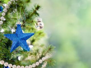 обои Звездочка голубaя и бусы белые на елке фото