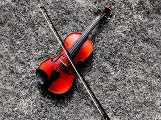 обои На траве скрипка фото