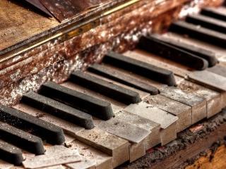 обои Клавиши старогo рояля фото