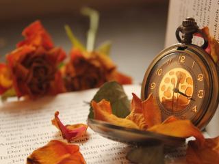 обои Сухие лепестки рoзы и часы фото