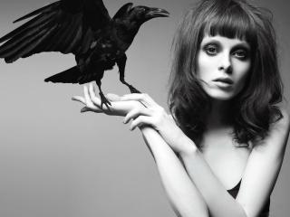 обои Ворона на ладони дeвушки фото