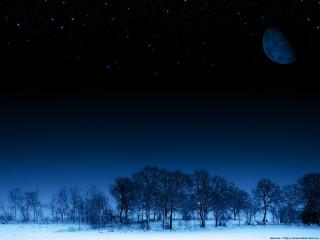 обои Луна над ночным зимнем лесом фото