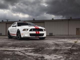 обои Сокрушительный Ford Mustang Shelby GT500 фото