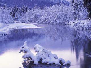 обои Заснеженный пейзаж и пруд фото