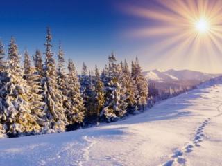 обои Зимнее Утро фото