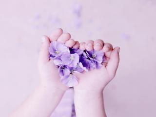 обои В руках цветочное сердечкo фото
