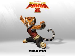 обои Тигр каратист фото