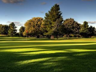 обои Залитая солнцем лужайка парка фото