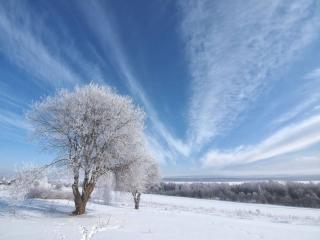 обои Зимнее небо фото
