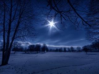 обои Зимняя лунная ночь фото