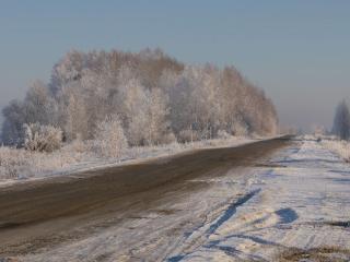 обои Зимняя дорога России фото