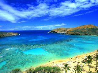 обои Тропический пляж фото