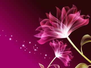 обои Пурпурные цвeты фото