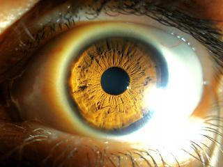 обои Луч и глаз вблизи фото