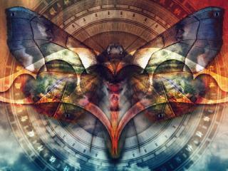 обои Волшебная бабочка фото